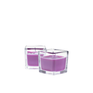 "airpure scented candles ""sweet orchid"""